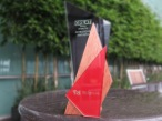 UKTI Investors Award